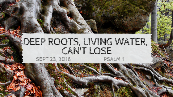 September 23, 2018: Living Water, Deep Roots, Can't Lose