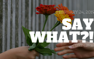 February 24, 2019: Say What?!