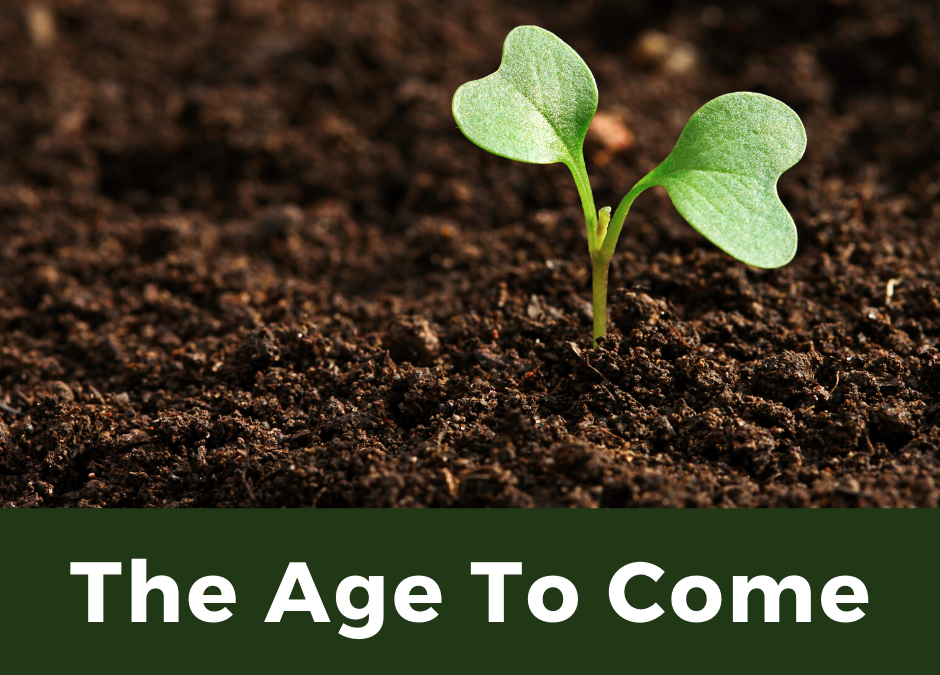 November 10, 2019: The Age To Come